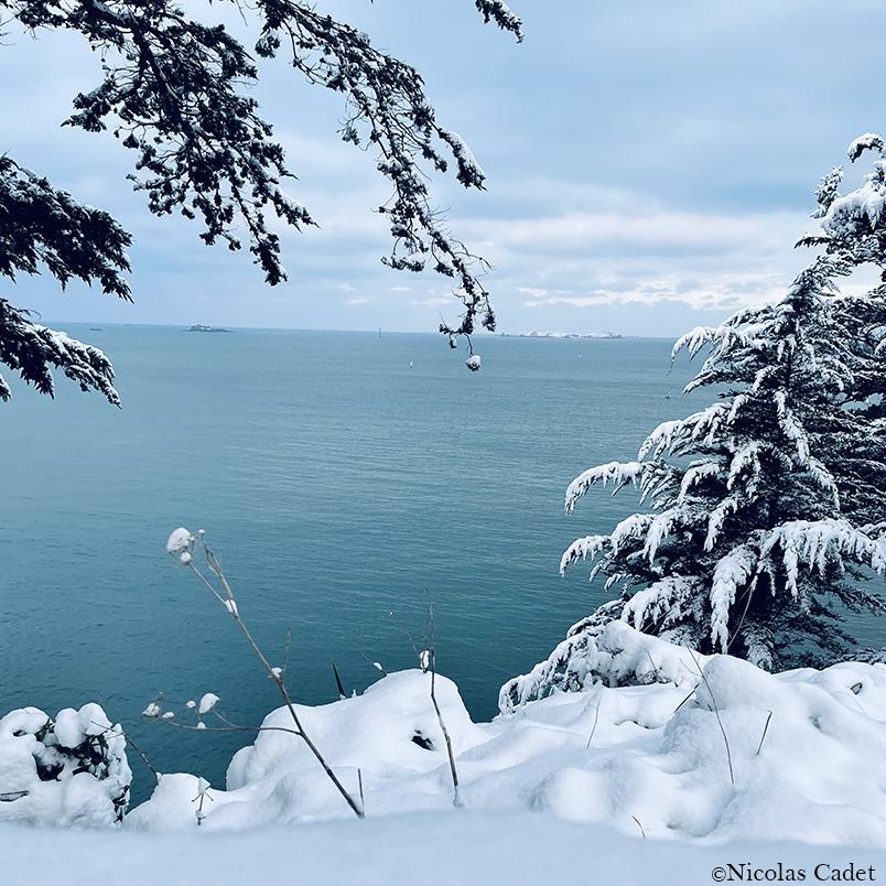 winter_copy